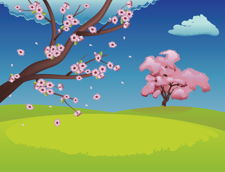 Spring background with green grass field and sakura in bloom. Vector