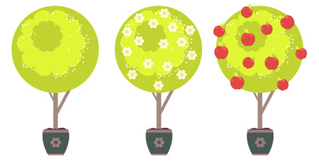 Cartoon stylized green tree with white flowers in spring and red apples in summer time. Illustration