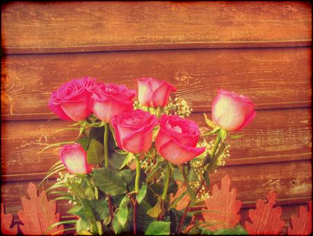 vintage grunge image: Immagine del grunge dell'annata con le rose rosa su sfondo muro di legno.