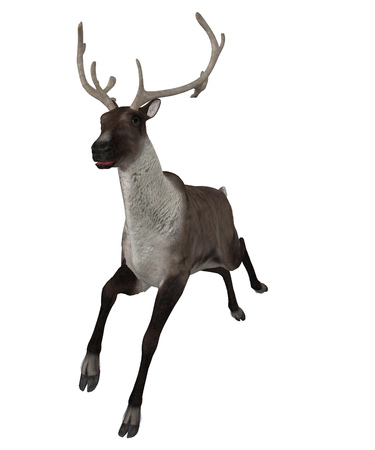 strongly: Digitally rendered illustration of a reindeer on white background.