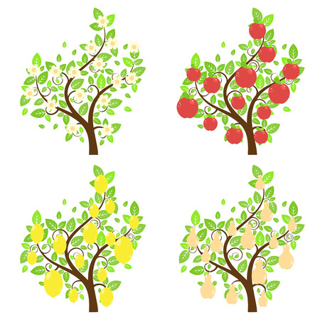 Set of cartoon stylized apple, lemon and pear trees. Illustration