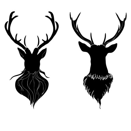 black tail deer: Head of a male deer in hand drawn style illustration.