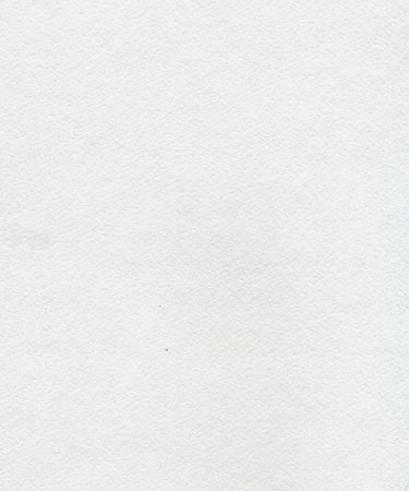 white space: Highly textured white watercolor paper as background.