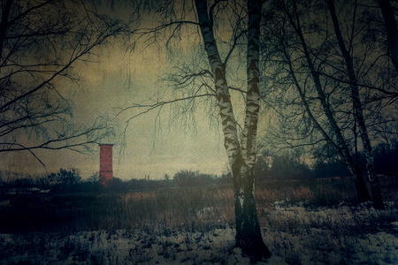 ancient philosophy: Trees in winter park, old grunge textured background. Stock Photo