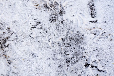 Winter shot of many shoeprints in fresh snow background. photo