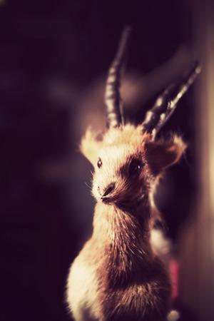 animal ram: Cute fluffy toy animal ram made of natural fur. Stock Photo