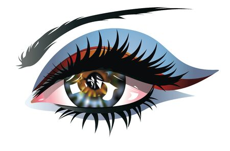long eyelashes: Female eye of blue and brown color with long lashes and eyeshadow.