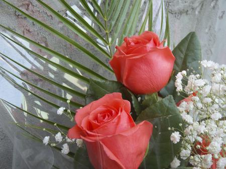 Rosen Bouquet Mit Kleine Weiße Blumen Lizenzfreie Fotos, Bilder Und ...