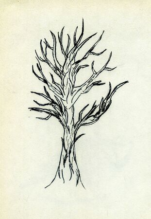 leafless: Grunge sketch of leafless tree on paper background. Stock Photo