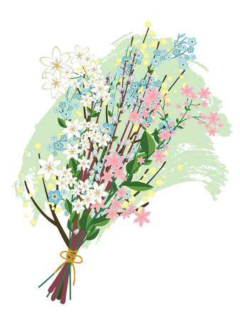 pussy willow: Colorful spring flowers collected in a bouquet on white background.