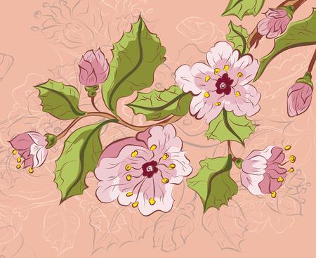 Croquis de couleur de sakura fleur branche sur la couleur de fond de papier. Banque d'images - 38644824