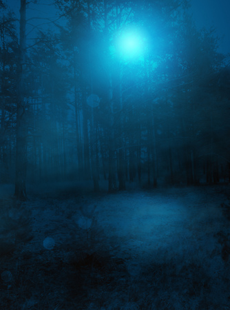 Mysterious night background with spooky foggy forest.