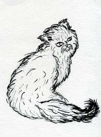 persian cat: Grunge sketch of a cute Persian cat, abstract illustration.