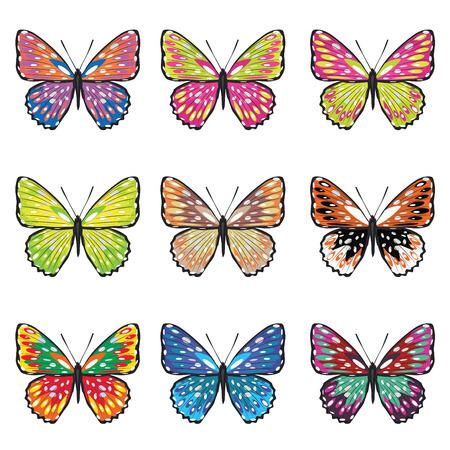 Collection de papillons d'été dans différentes couleurs sur fond blanc. Banque d'images - 39222476