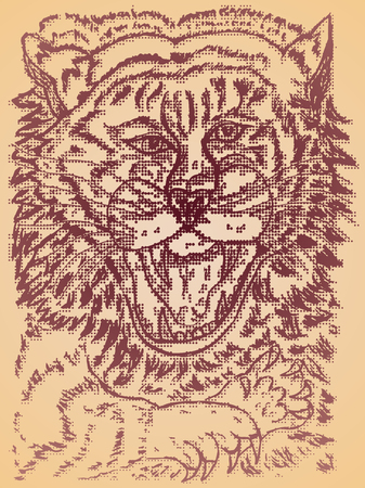 bengals: Grunge sketch of a stylized tiger portrait, abstract illustration.