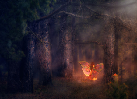 Illustration of a 3d fairy girl in a magical forest. Stock Photo