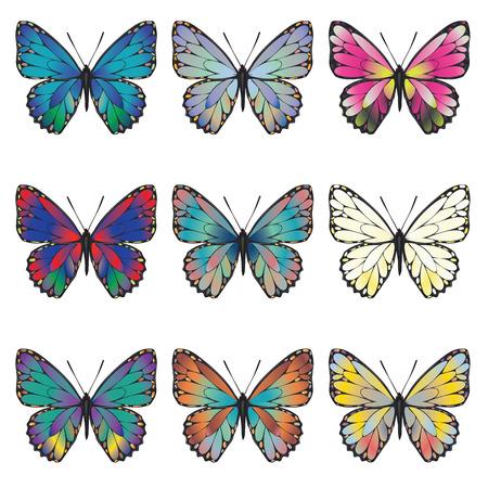 mariposas amarillas: Colección de mariposas de verano en diferentes colores sobre fondo blanco.