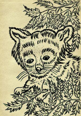 one panda: Grunge sketch of a cute red panda, hand drawn illustration.