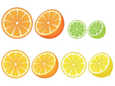 grapefruit: Grapefruit, lemon, orange and lime slices, colorful background. Illustration