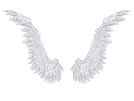 animal angelic: Pair of detailed light gray angel wings on white background. Illustration