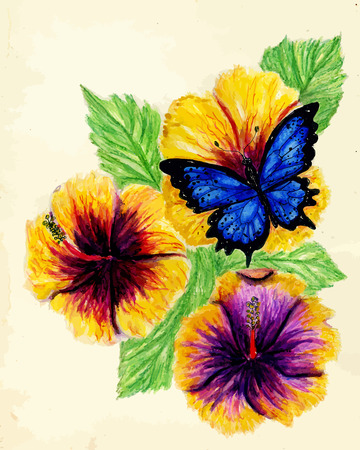 stamens: Watercolor painting of hibiscus flower, hand drawn illustration.