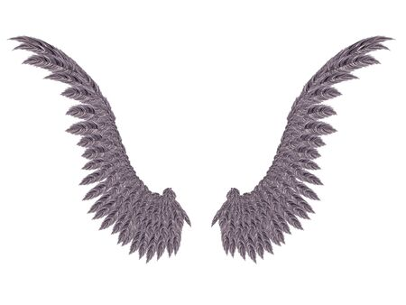 mysticism: Pair of detailed dark angel wings on white background.