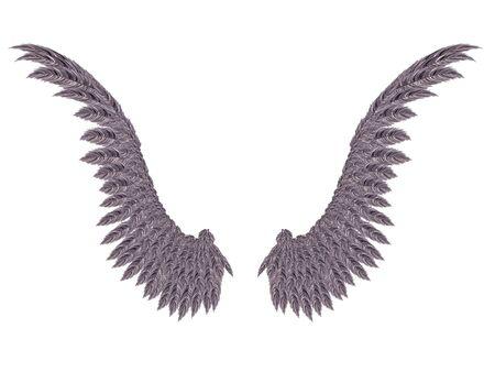 dark angel: Pair of detailed dark angel wings on white background.