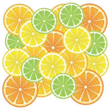 citron: Grapefruit, lemon, orange and lime slices, colorful background. Illustration