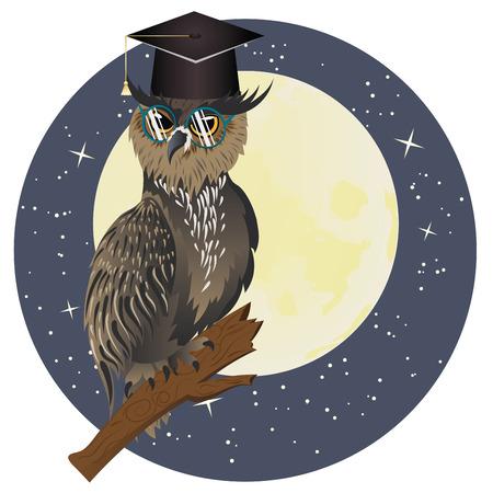 big eye: Cartoon great horned owl wear big eye glasses.
