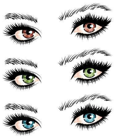 ojos negros: Ilustración de los ojos de diferentes colores en blanco de la mujer.