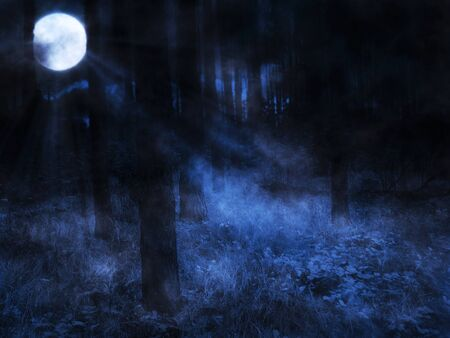 Dark mysterious foggy forest and full moon. Stock Photo
