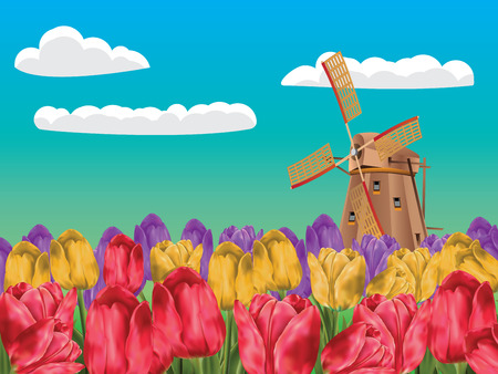 traditional windmill: Cartoon landscape with a traditional windmill and tulip flowers. Illustration