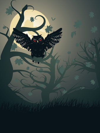 moon  owl  silhouette: Owl silhouette in the dark night forest with full moon. Illustration
