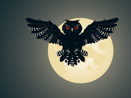 night owl: Night owl silhouette and big moon in the sky. Illustration