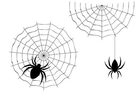 arachnid: Abstract illustration of cartoon halloween spider design. Illustration