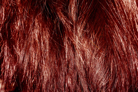 messy hair: Messy hair texture of red color as background.