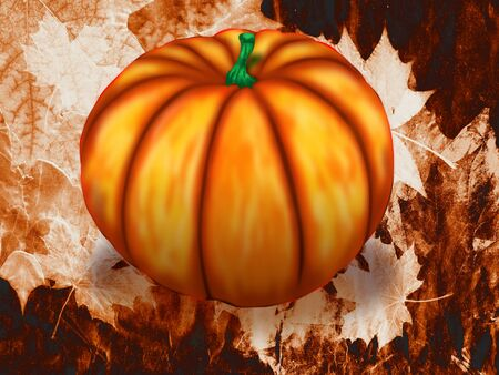 cucurbit: Fresh big orange pumpkin, digital illustration background.