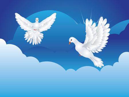 dove flying: Graceful flying white pigeon, dove flying in the blue sky.