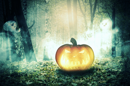 dark forest: Mysterious dark forest with foggy ghosts and halloween pumpkin. Stock Photo