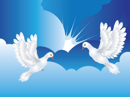 hope symbol of light: Graceful flying white pigeon, dove in the blue sky.