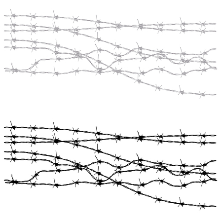 barb wire isolated: Metal barbed wire illustration on white background. Illustration