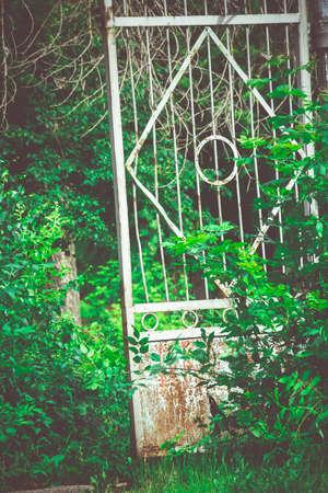 metal gate: Abandoned rural stadium metal gate and green foliage.