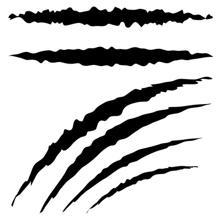 scratches: Cat claw scratches marks set on white background.