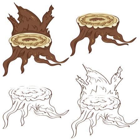 Cartoon tree stump with roots on white background.