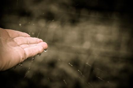 human palm: Splashing drops of rain on human palm, close up background.