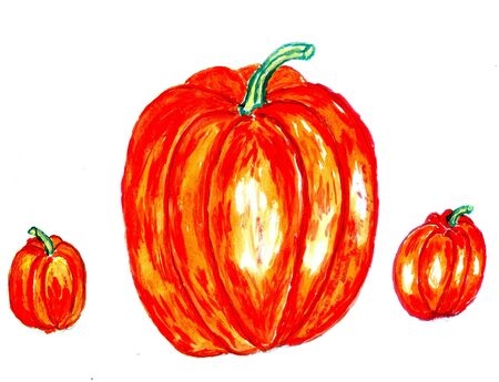fruition: Watercolor and acrylic painted three orange pumpkins, hand drawn illustration.