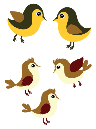 sparrows: Cute cartoon sparrows and tomtits simple illustration.
