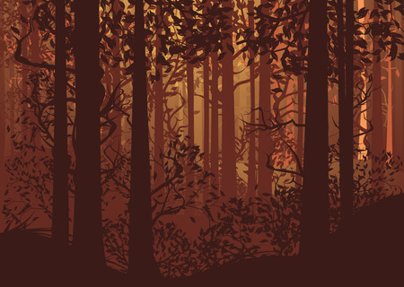 thickets: Deciduous autumn forest landscape with silhouettes of trees and grass.