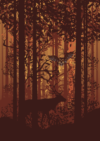 enchanted forest: Deciduous autumn forest landscape with silhouettes of trees, deer and grass. Illustration