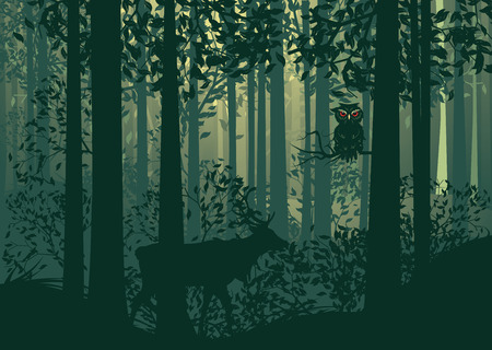deciduous forest: Deciduous forest landscape with silhouettes of trees and deer in green mist.